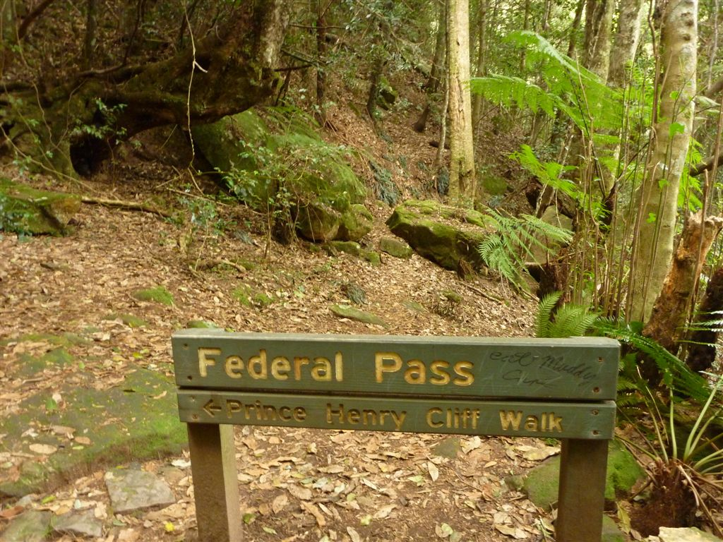 federal-pass-01
