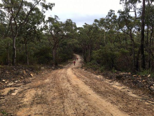 oaks-fire-trail-01
